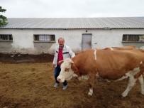 Çalınan Hayvanları Bulunan Çiftçi Ahmet Kuramaz Açıklaması
