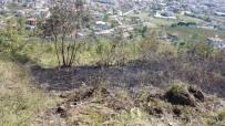 Fındıklık Yangını Anında Müdahale İle Söndürüldü