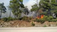 Orman Yangını Kontrol Altına Alındı