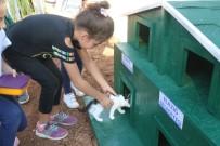Örnek Projeyle 'Kedi Ve Köpekler' Okul Bahçesinde