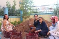 Siirt'te Öğretmenler Atık Malzemelerle Okulun Çehresini Değiştirdi