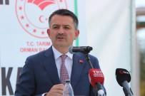 Bakan Pakdemirli Açıklaması 'Pancar Şekeri Satışında 2018 - 2019 Yılında Yüzde 14 Artış Sağlandı'