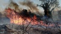 Tekirdağ'da Orman Yangını Açıklaması Helikopter, Arazöz Ve İtfaiyeler Müdahale Ediyor