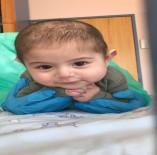 LENF KANSERİ - Yunus bebeğin yaşamı bulunacak iliğe bağlı