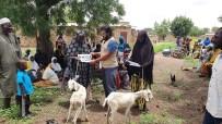BURKINA - Afrikalı Ailelere Süt Keçileri Dağıtıldı