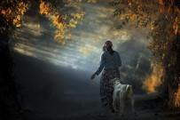 İZZET KERIBAR - Muğla'da Yaşamı Anlatan En İyi Kare Belli Oldu