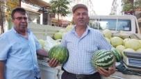 Burhaniye'de Yabancılar Karpuzu Kazandırdı