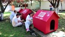 ENGELLİ ÇOCUK - Yalova'da 'Bir El, Bin Pati' Projesi