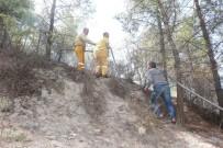 BEŞPıNAR - Adıyaman'da, Korkutan Orman Yangını