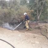 Kıyı Yangını Ormana Sirayet Etmeden Söndürüldü