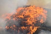 GÜNEY DOĞU - Orman Yangınları Erken Uyarı Sistemiyle Engellenecek