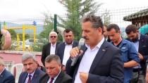 OSMAN KAYMAK - Samsun'da Kenevir Tohumu Hasadı Başladı