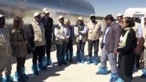 ORMAN ALANI - 79 Bin Hektarlık Alan Ekonomiye Kazandırıldı