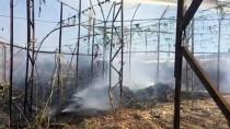 Antalya'da Sera Yangını