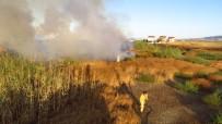 Biga'da Sazlıkta Çıkan Yangın Korkuttu