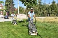 Tepebaşı'nın Parklarında Çalışmalar Sürüyor
