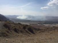 Gölün Ortasındaki Sazlıkta Yangın