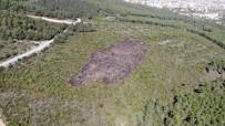 (Özel) Aydos Ormanı'nda Kundaklama Sonucunda Yanan Ormanlık Alandaki Tahribat Havadan Görüntülendi