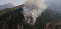 ORMAN ALANI - Akkaya Köyünde Orman Yangını Çıktı