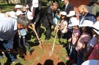 ŞANLIURFA VALİSİ - Şanlıurfalı Minik Öğrenciler Fidanları Toprakla Buluşturdu