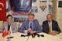 Güldal  Açıklaması 'TMO'ya Fındık Veren Üreticilerin Paraları Bugün İtibariyle Hesaplarında Olacak'