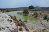 ÇıTAK - Aliağa, Zengin Su Kaynaklarıyla Dikkat Çekiyor