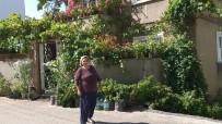 Evinde 500 Saksı Çiçekle Yaşıyor