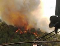TRAFİK MÜDÜRLÜĞÜ - Marmaris'te orman yangını