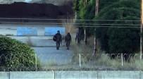 (Özel) YPG'li Teröristler Sınırda Görüntülendi