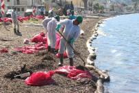 Foça Sahilinde Korkutan Petrol Atıkları, 50 Kişilik Ekip Bölgede
