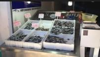 Kastamonu'da Hamsinin Fiyatı 5 Liraya Kadar Düştü