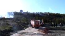 Manyas'ta Makilik Alanda Yangın