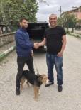Av Köpeği Karşılığında Transfer Oldu