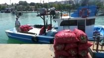 SALYANGOZ - Balıkçılar Rotayı Salyangoza Çevirdi
