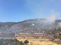 Bursa'da Korkutan Orman Yangını