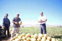 Erzincan'da Tarım Sektörüne Yatırımlar Büyük Bir İvme Kazanmaya Başladı