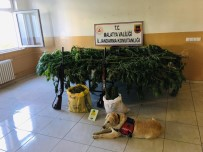 Malatya'da 2 Bin 20 Kök Kenevir Ele Geçirildi