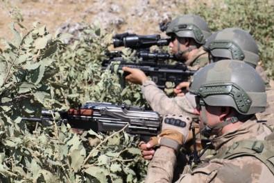 Terörle mücadelede 10 bin 800 kırsal, şehirlerde ise 895 operasyon yapıldı