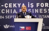 ÇEK CUMHURIYETI - Türkiye-Çekya İş Forumu