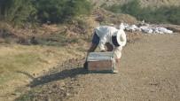 Burhaniye' De Çalılık Yangını Büyük Korkuya Neden Oldu