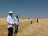 Malazgirtli Çiftçiler, Kooperatif Ve Banka Borçlarının Ertelenmesini İstedi