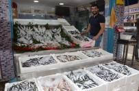 Balıkçılar Yeni Sezonun Başında Umduklarını Bulamadı