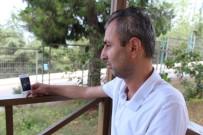 DEDEKTIF - Kaybolan Horozunu Bulmak İçin Dedektif Gibi İz Sürüyor