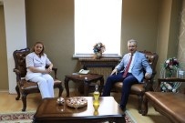 Mobbing, Erzincan Binali Yıldırım Üniversitesinde Seçmeli Ders Olarak Okutulacak