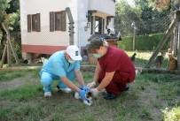 Osmangazi'de Can Dostlar Aşılandı