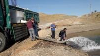 KANDIL - Adatepe Ve Kandil Barajlarına 750 Bin Adet Yavru Balık Bırakıldı