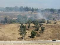 Askeri Çamlıkta Korkutan Yangın