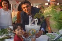 Festivalde 2 Bin Selvi Fidanı Dağıtıldı