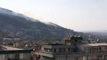 GÜNCELLEME - Bursa'da Ormanlık Alanda Yangın