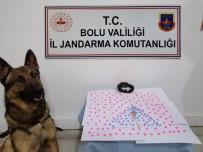 Jandarma Ekiplerinden Yeni Yıl Operasyonu